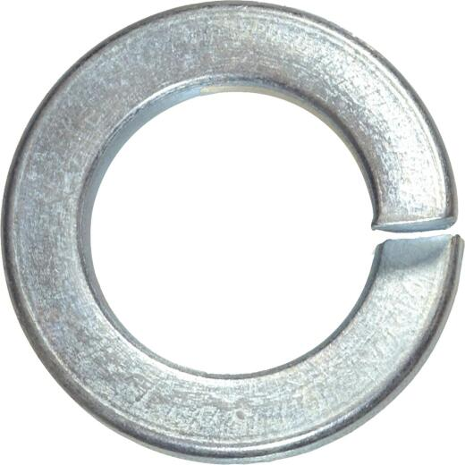 Hillman #10 Hardened Steel Zinc Plated Split Lock Washer (100 Ct.)