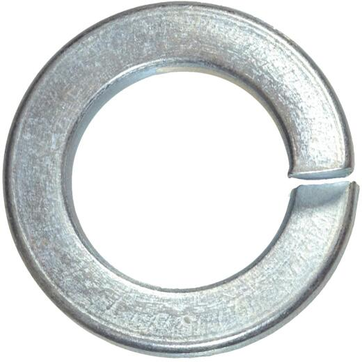 Hillman 5/16 In. Hardened Steel Zinc Plated Split Lock Washer (100 Ct.)