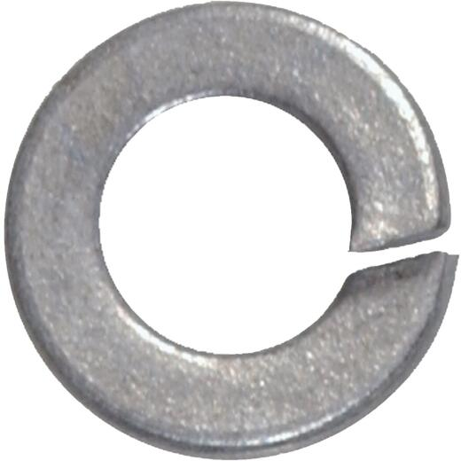 Hillman 1/4 In. Steel Galvanized Split Lock Washer (100 Ct.)