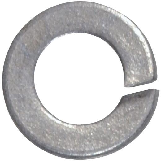 Hillman 5/16 In. Steel Galvanized Split Lock Washer (100 Ct.)