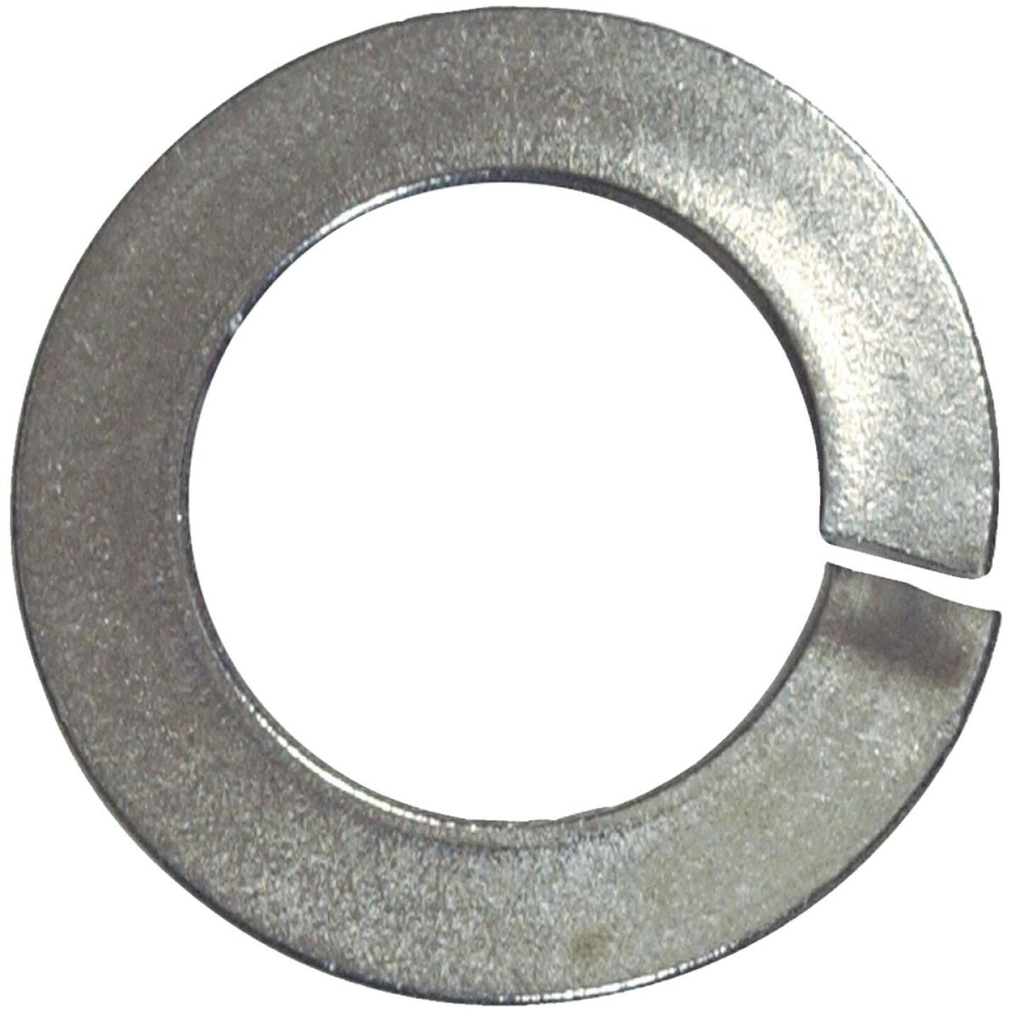 Hillman 3/8 In. Stainless Steel Split Lock Washer (100 Ct.) Image 1
