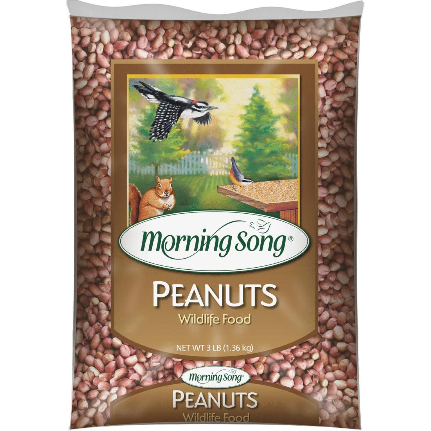 Morning Song 3 Lb. Inshell Peanuts Squirrel Food Image 1