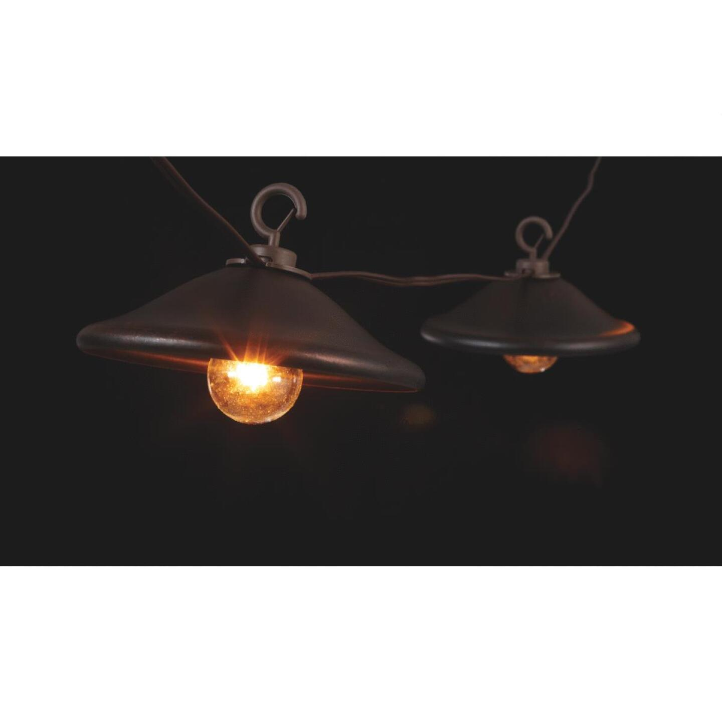 Gerson 10 Ft. 10-Light Clear Bronze Cover String Lights Image 3