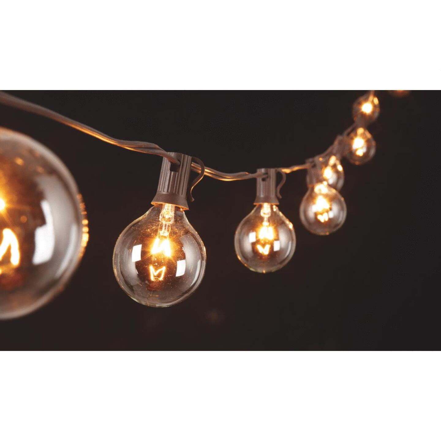 Gerson 10 Ft. 10-Light Clear Globe String Lights Image 3