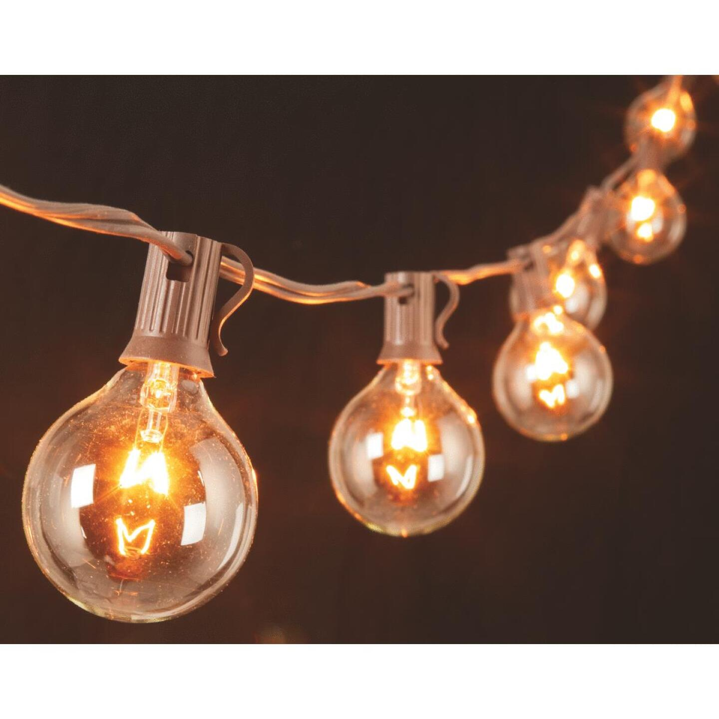 Gerson 10 Ft. 10-Light Clear Globe String Lights Image 1
